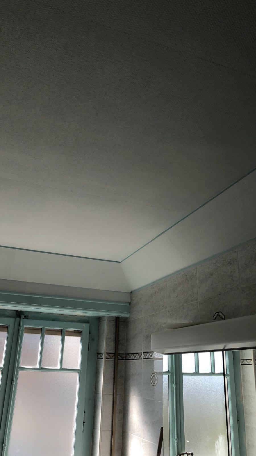 Nous avons posé sur ce plafond un voile en fibre de verre pour consolider la surface du plafond et ainsi éviter les micro-fissures