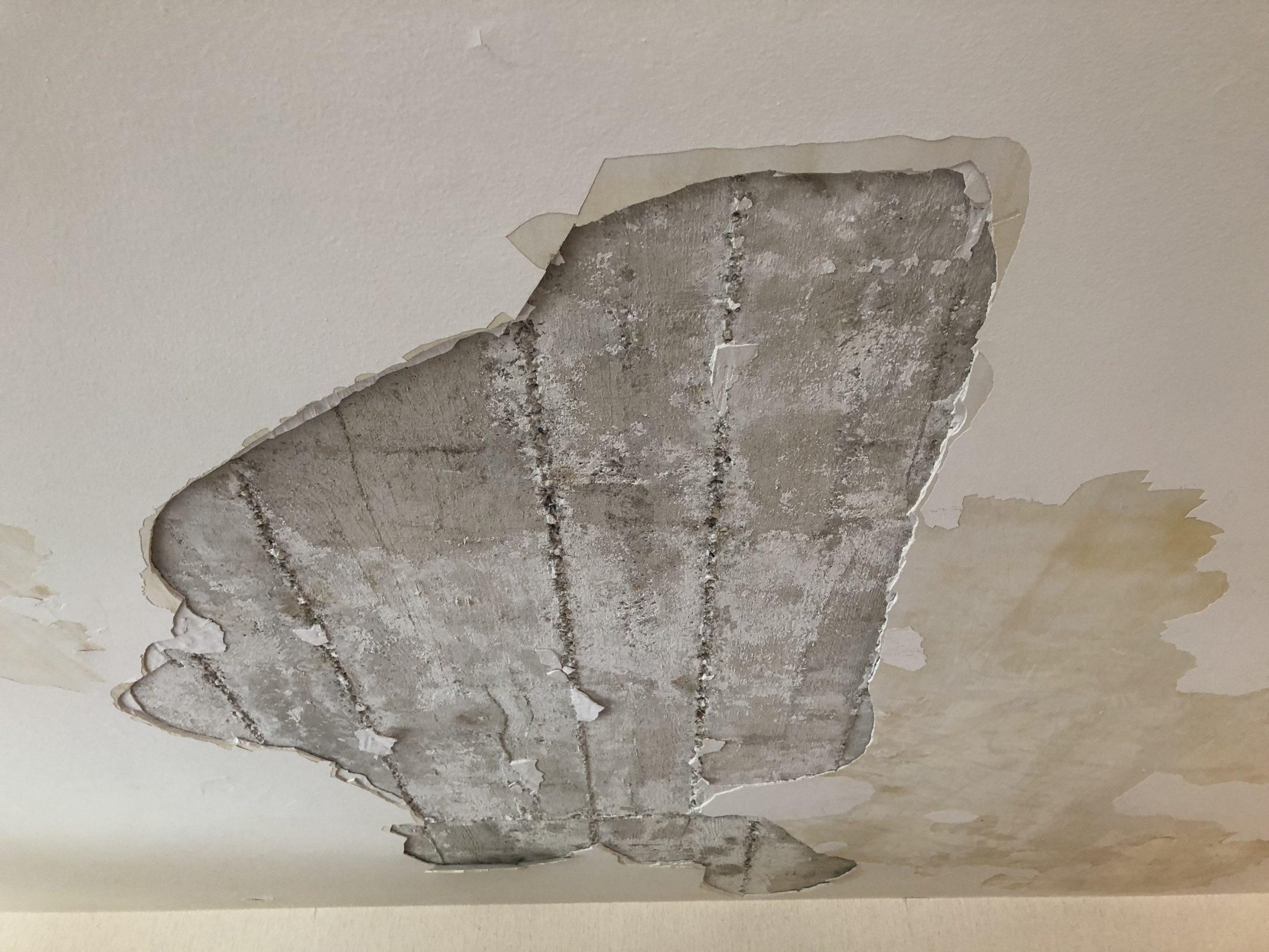 Le plâtre se décolle de la dalle en béton