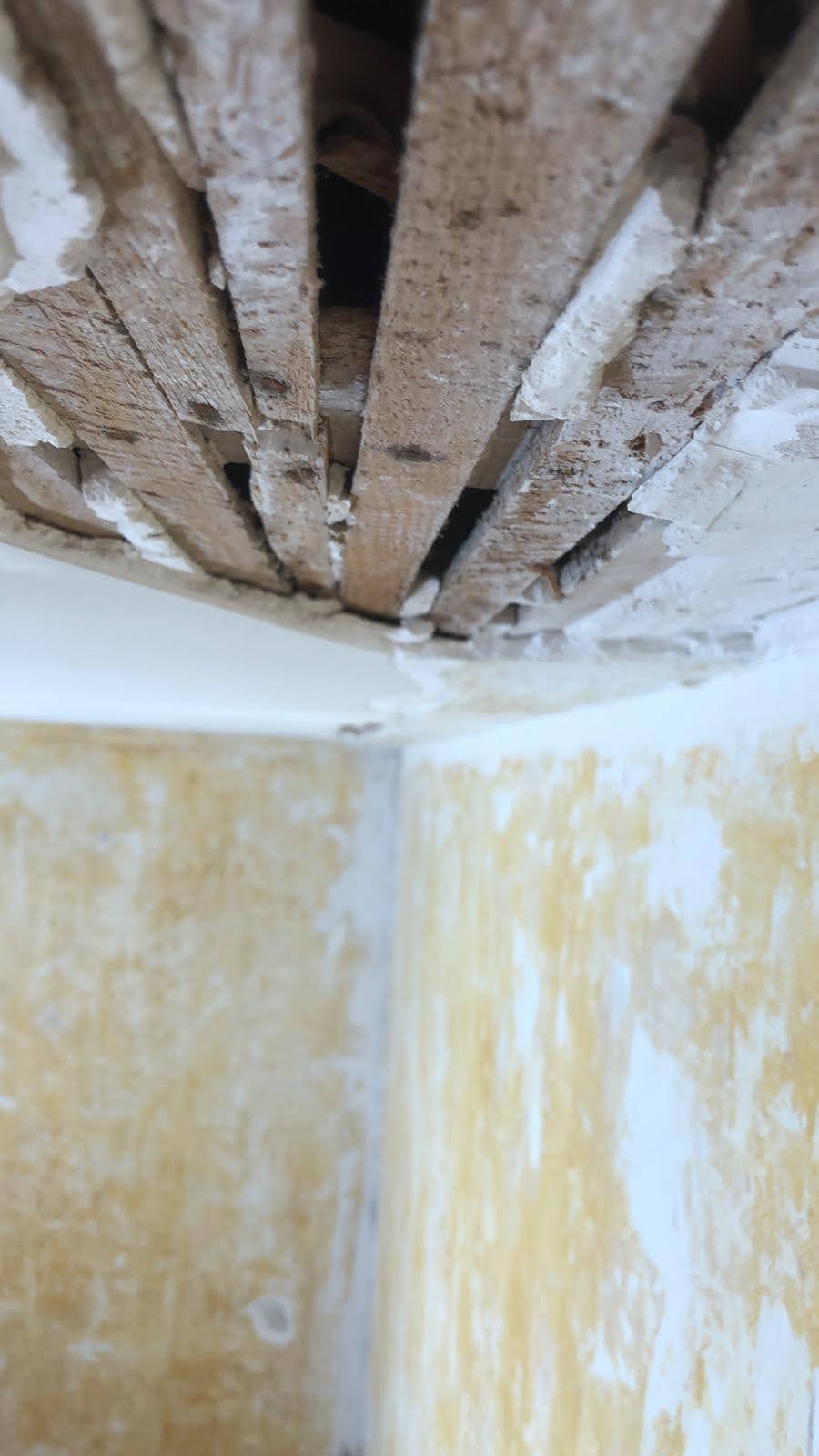 Grattage de toutes les zones nécessiteuses sur plafonds, murs et boiseries